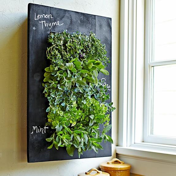 Il giardino verticale in casa - Giardino verticale in casa ...