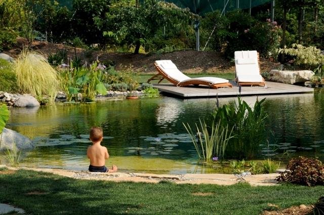 Nuovi orizzonti per i laghi da giardino for Laghetti ornamentali