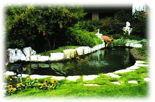 Laguna il laghetto che rende il giardino perfetto - Laghetto in giardino ...