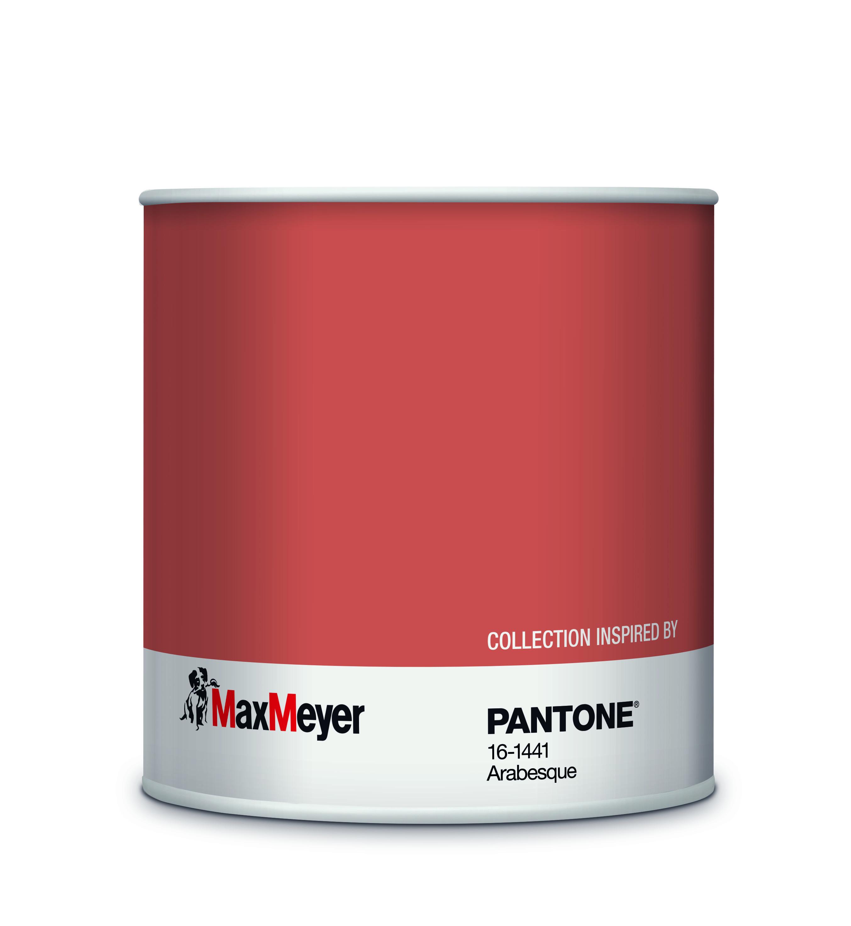 Le Pitture Maxmeyer By Pantone In Esclusiva Da Leroy Merlin