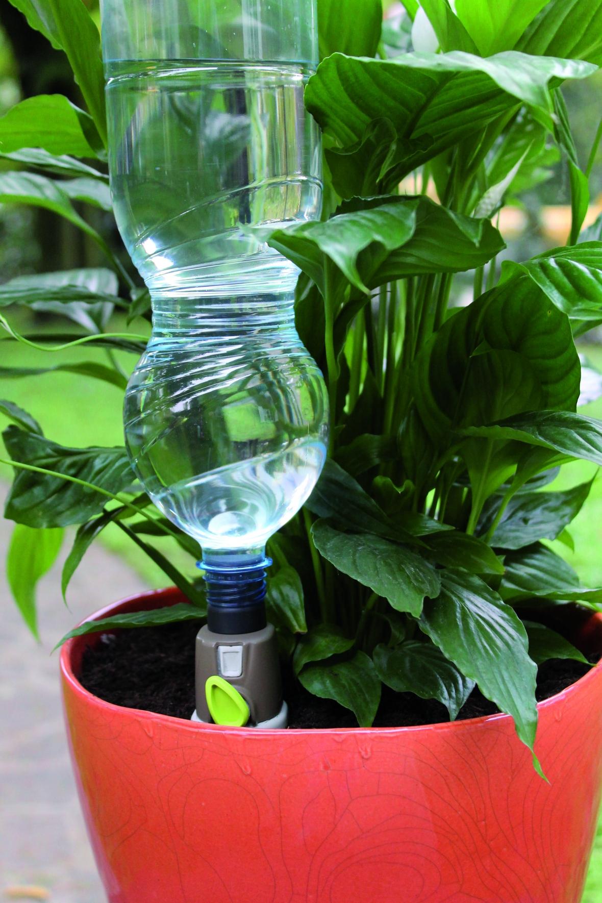 Полив растения своими руками